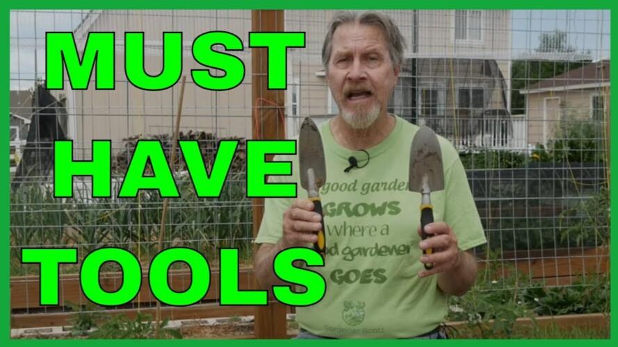 10 Essential Gardening Tools (for Better Gardening)