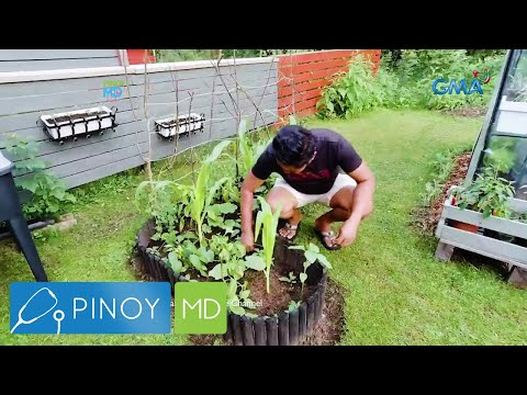 Pinoy MD: Edible gardening at home!