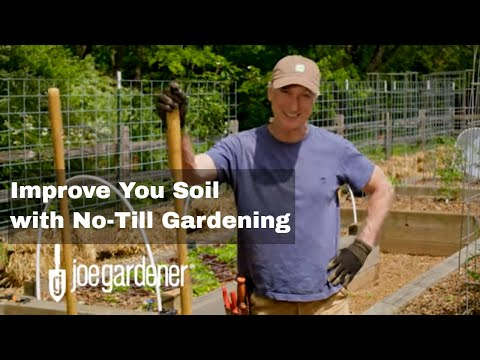 How To Open Up and Improve Your Soil With No-Till Gardening