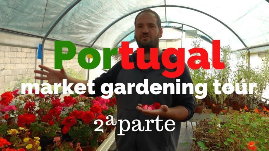 Portugal Market Gardening Tour | 2ª parte: MICROBOTÁNICA