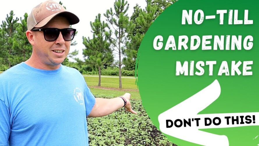 A Big Lesson We Learned About No-Till Gardening -- *FULL GARDEN TOUR*