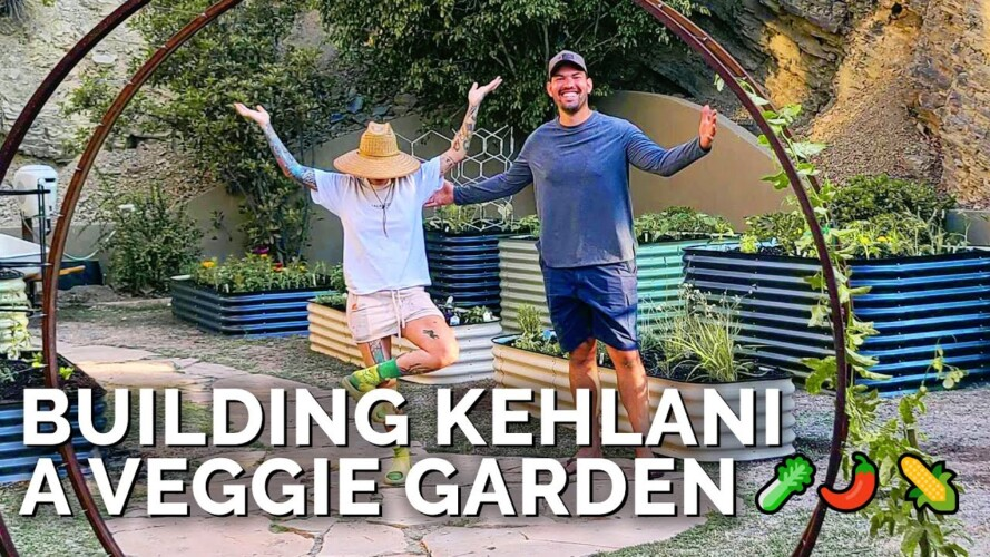 Building a Raised Bed Garden From Start to Finish (feat. @Kehlani)
