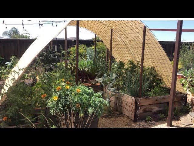 garden tour July 2021- southern california gardening