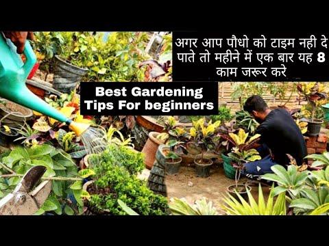 Best Gardening Tips For beginners ।। बस महीने में यह 8 काम जरूर करे पौधे की ग्रोथ रोक नही पाओगे