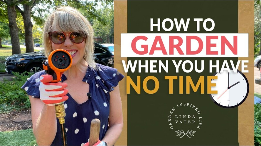 🍃🙆♀️🍃 How to Garden When You Have No Time    Linda Vater