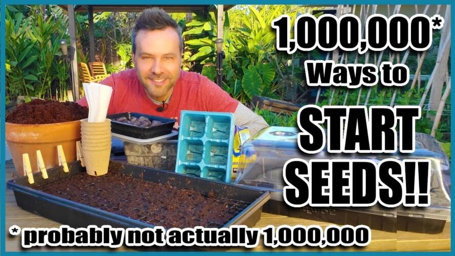 How to Start Seeds // Organic Gardening Series 4 of 4