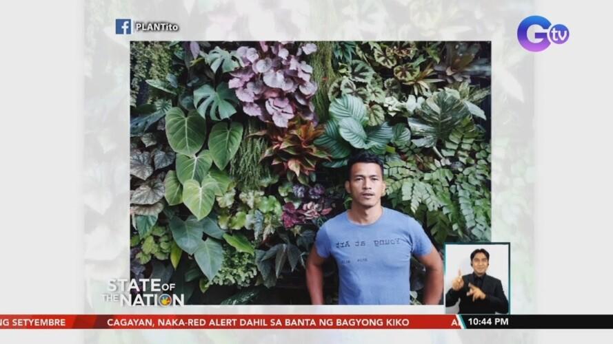 Vertical gardening, solusyon para sa mga gustong maghalaman pero maliit ang bakuran | SONA