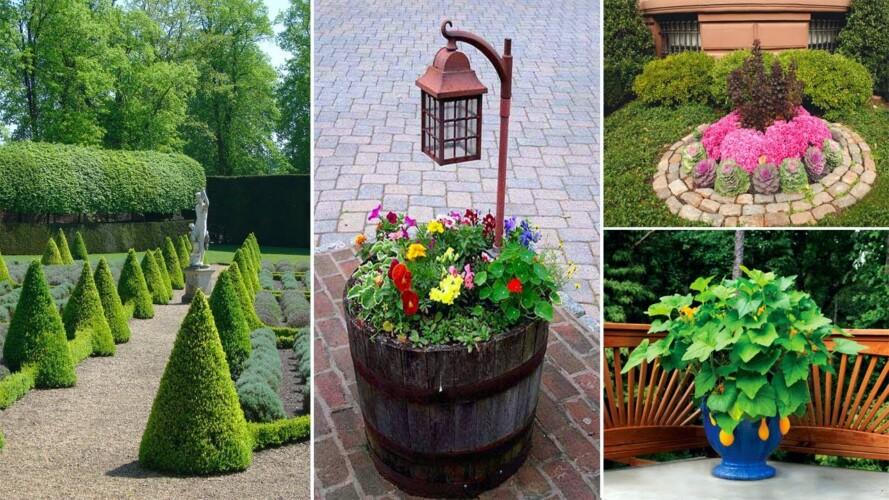 55+ Genius Gardening Ideas on Low Budget | garden design