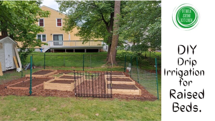 Our Garden 2021 |  Drip irrigation system installation  |  DIY Drip Irrigation  |Backyard Gardening