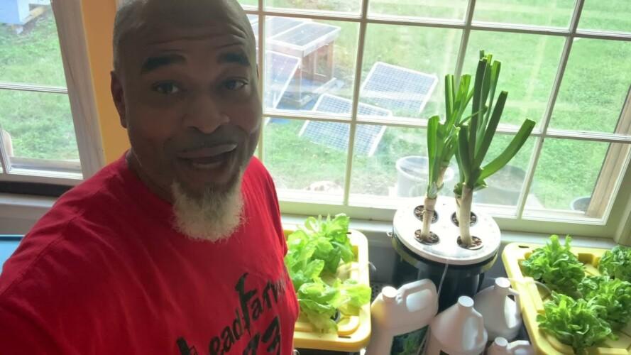 hydroponic gardening indoors using solar power