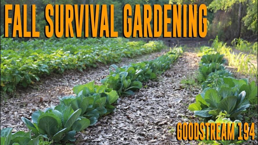 Fall Survival Gardening (Goodstream #194)