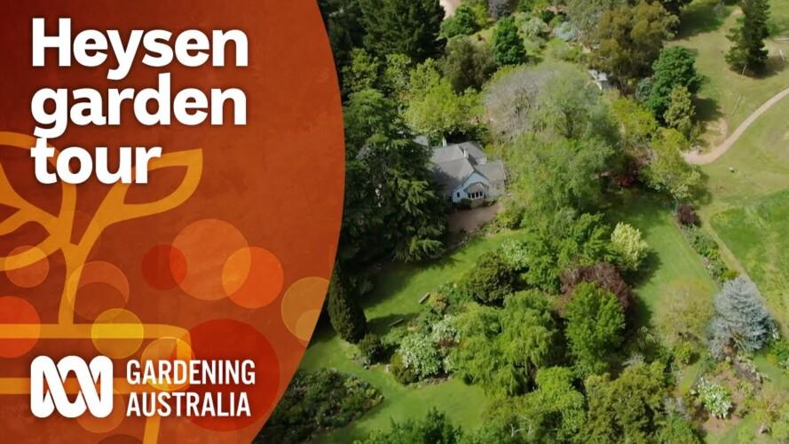 Exploring artist Hans Heysen's stunning garden | Garden Design and Inspiration | Gardening Australia