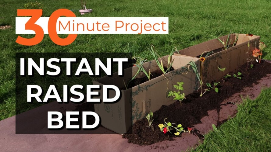 Instant Raised Bed | 30 minute gardening project