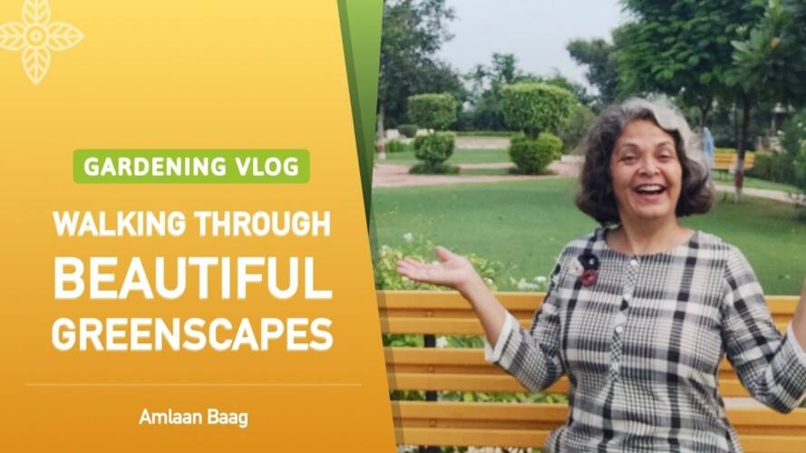 Gardening Vlog | Walking Through Beautiful Greenscapes | एक खूबसूरत गार्डन की सैर