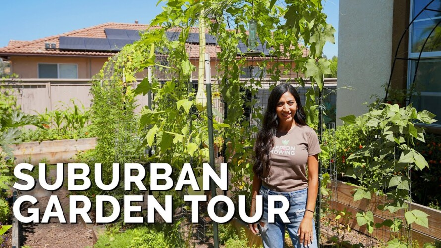 She Grows 50% Of Her Groceries At Home 🏡   Suburban Garden Tour