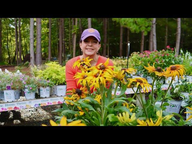 Nursery Tour - New Trees & Perennials Are Here | Gardening with Creekside