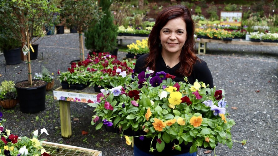 Garden Nursery Tour with Fall Color | Gardening with Creekside