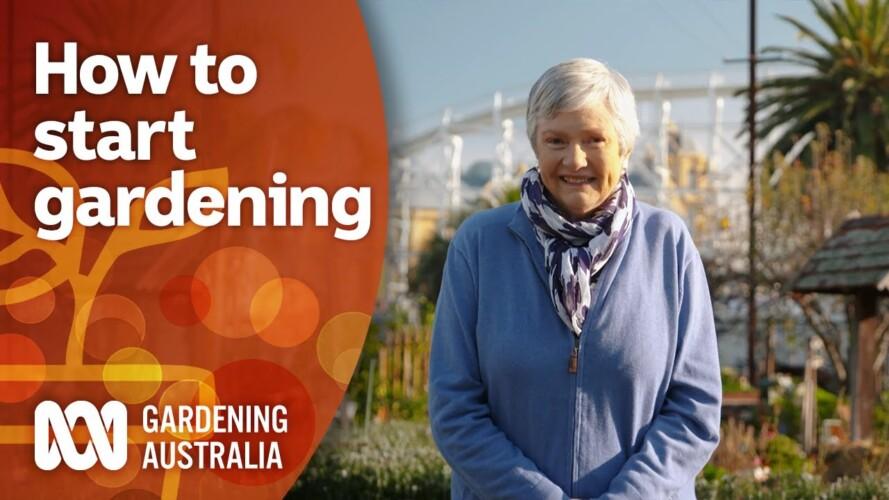 Beginner gardening tips for starting a successful garden | Gardening 101 | Gardening Australia