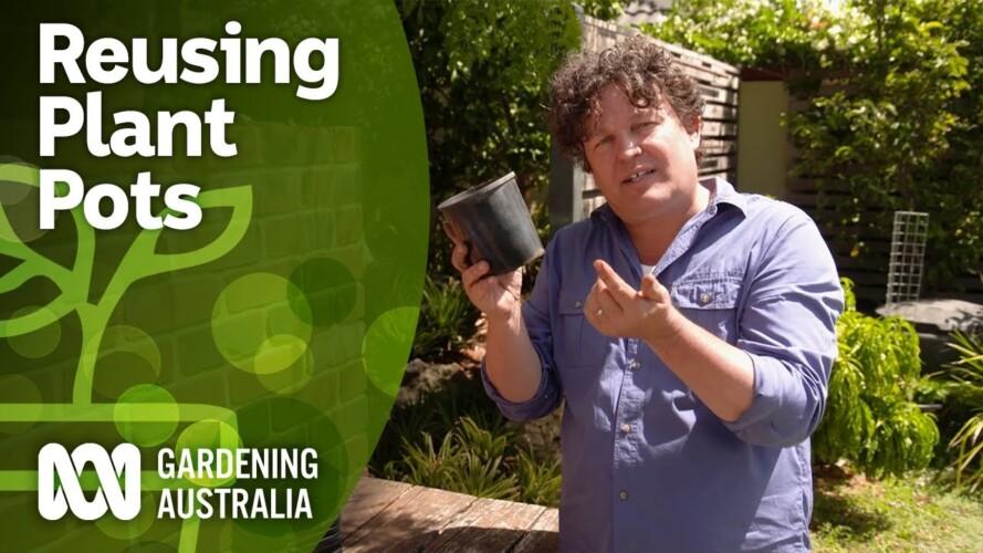 How to reuse plastic plant pots | Gardening Hacks | Gardening Australia