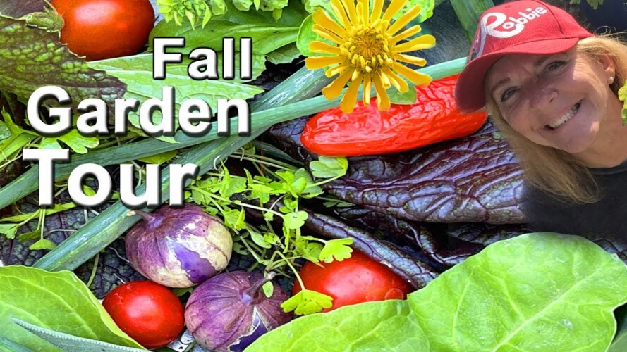 Vegetable Garden Tour 🍅 Container Gardening & Vertical Garden Tomatoes Peppers & Food for all Winter