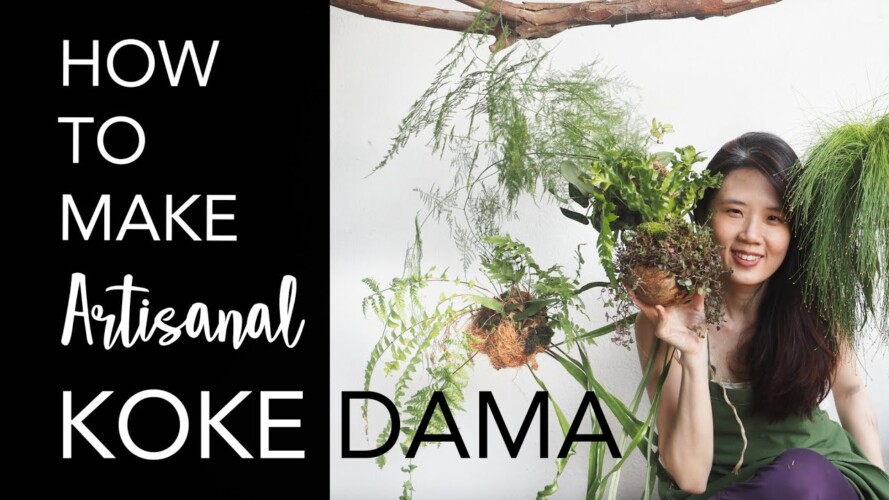 Kokedama - EASY & CREATIVE WAYS to hang plants + 6 Pro Gardening Tips