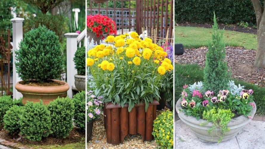 47 Container Gardening Ideas and Inspiration - Easy Garden idea