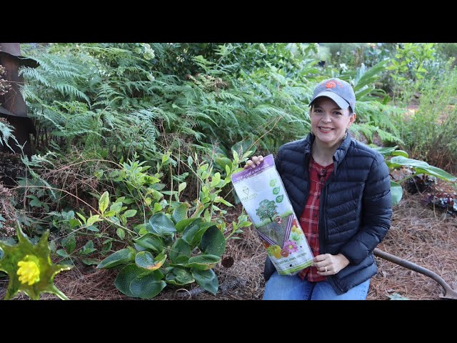 Saving Your Plants from Voles | Gardening with Creekside